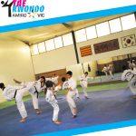 Taekwondo Amiro - descomptes U-Vals UVic